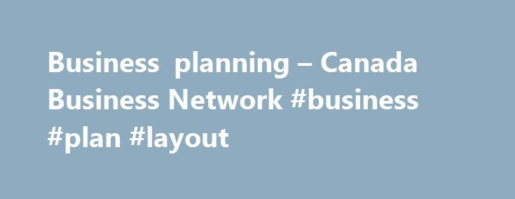 develop a business plan which includes information on marketing