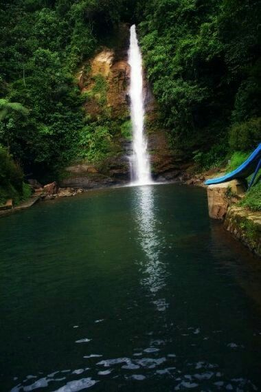 CHORRERA DE PANCE - (PANCE - CALI PANCE is a corregimiento in the south of the Colombian municipality of Cali, its area extends from the Valley of the Cauca River to the National Park Los Farallones de Cali.