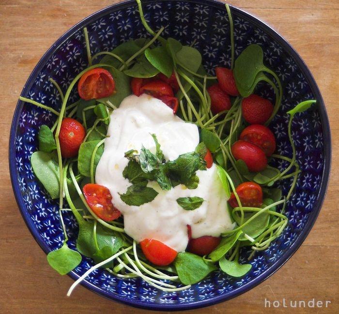 Portulak  Salat, auch genannt Postelein