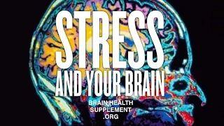 Brain Health Supplement - YouTube