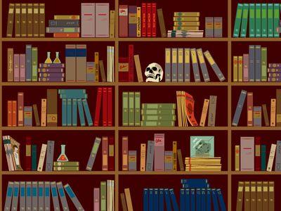 Bookshelves in the Study