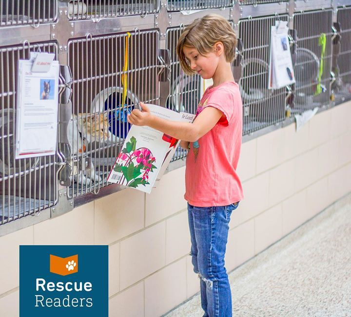 Lost and found pets Animal Humane Society offers an online bulletin board to help reunite lost pets with their families.