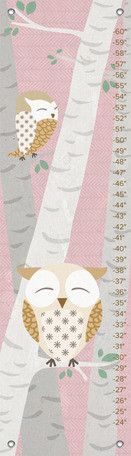 Birchwood Owl Growth Chart