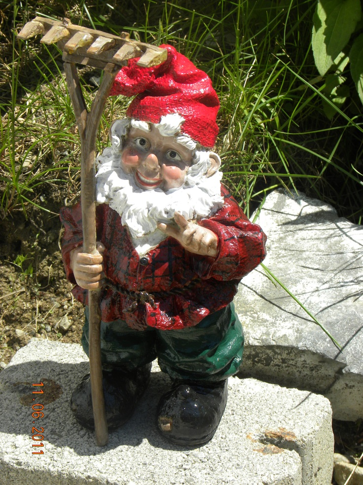 Gnome In Garden: 1000+ Images About Gnome On Pinterest