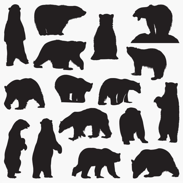 Polar Bear Silhouette Bear Black And White Animals Arctic Png And Vector With Transparent Background For Free Download Bear Silhouette Polar Bear Illustration Bear Illustration