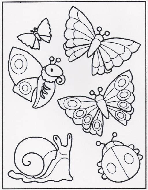 vlinders slak en lieveheersbeestje