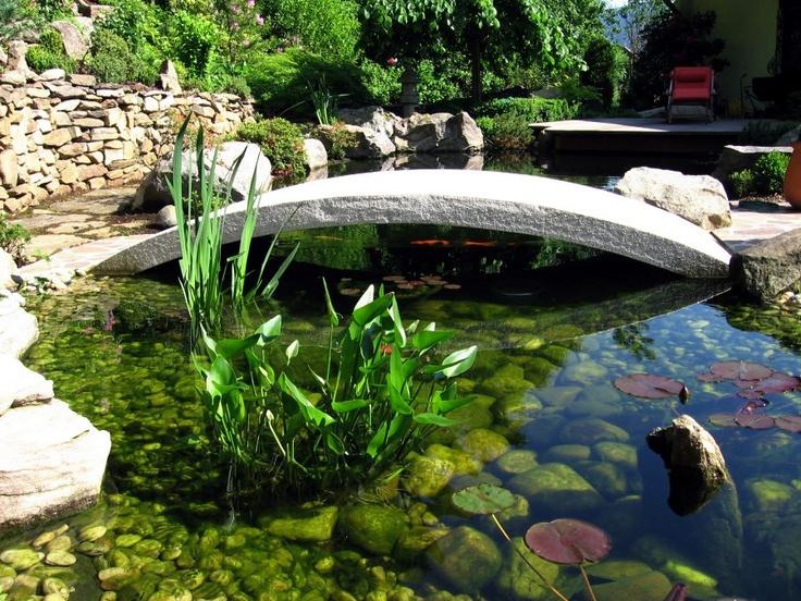 10 ideen zu koiteich auf pinterest pool brunnen hinterhof teich und gartengestaltung mit pool - Gartengestaltung mit teich ...