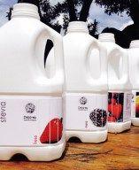 Escarola Alimentos Orgánicos es una empresa dedicada a la producción y comercialización de alimentos amigables que contribuyen al mejoramiento de la calidad