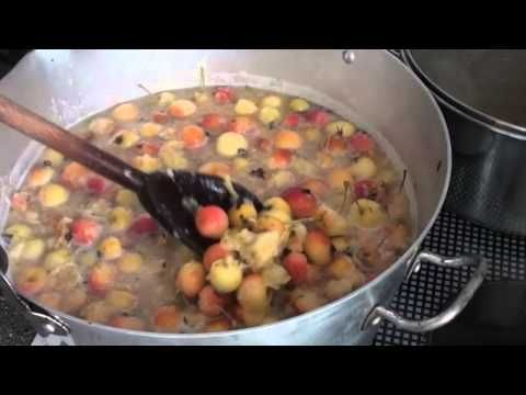 how to make crab apple jelly youtube - Apple Jelly Recipes