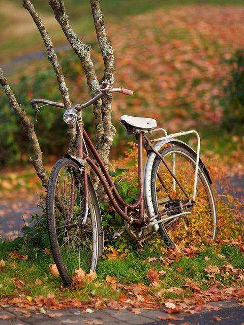 Old bike by Ernst Vikne on Flickr.