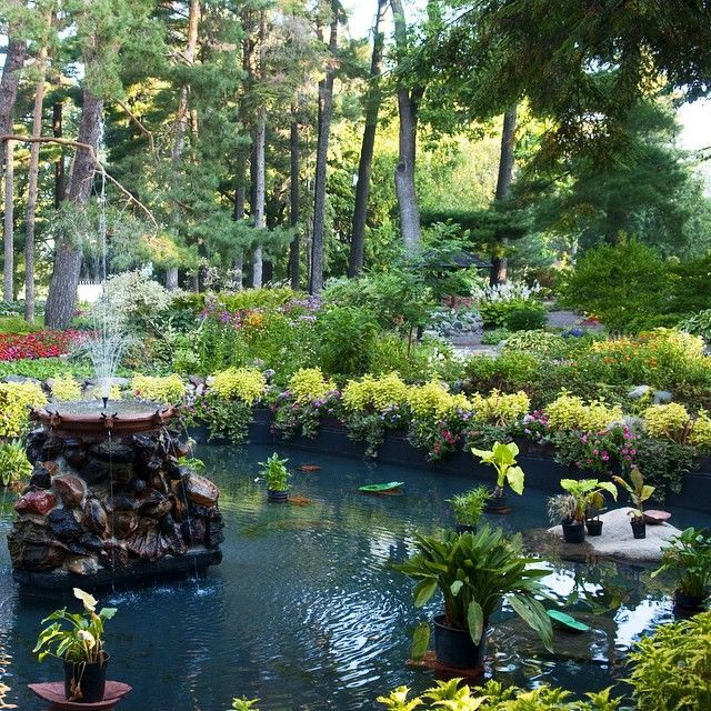 17 Best Images About Land Of 10 000 Lakes On Pinterest Mall Of America Parks And Lakes