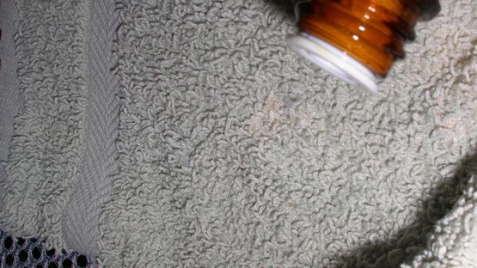 Mottenbefall vorbeugen - Motten abschrecken