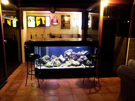 This looks so cool an aquarium as a counter island so for Fish tank bar