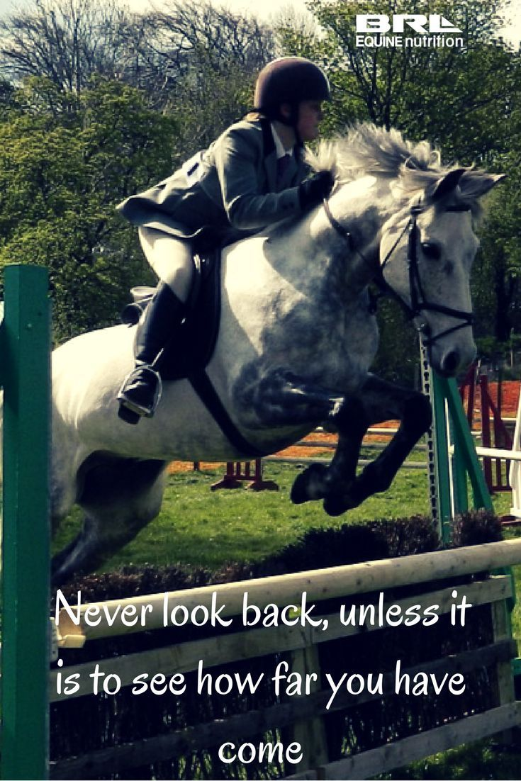 10 Inspirational Horse Quotes for the New Year | Horse ...