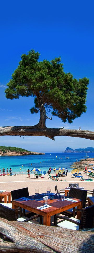 Cala Bassa Beach Club, Ibiza, Spain. More Ibiza? Visit Ibiza Bars & Restaurants⬇️ #ibizarestaurants #ibizaplayas #CalaBassa