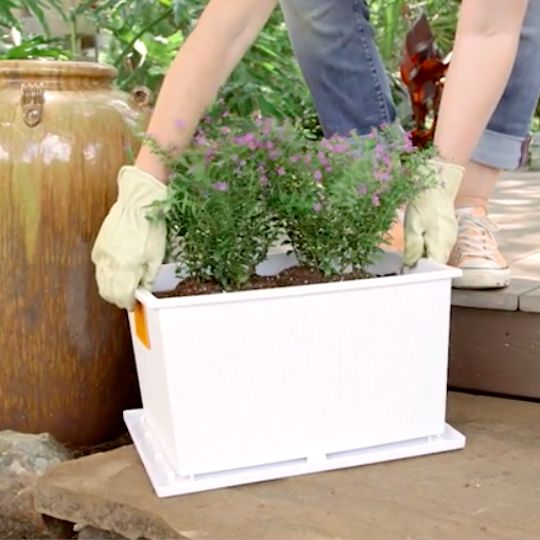 Turn Storage Containers Into Planters. Your flowers may outgrow your planters, but they'll never outgrow your creativity.