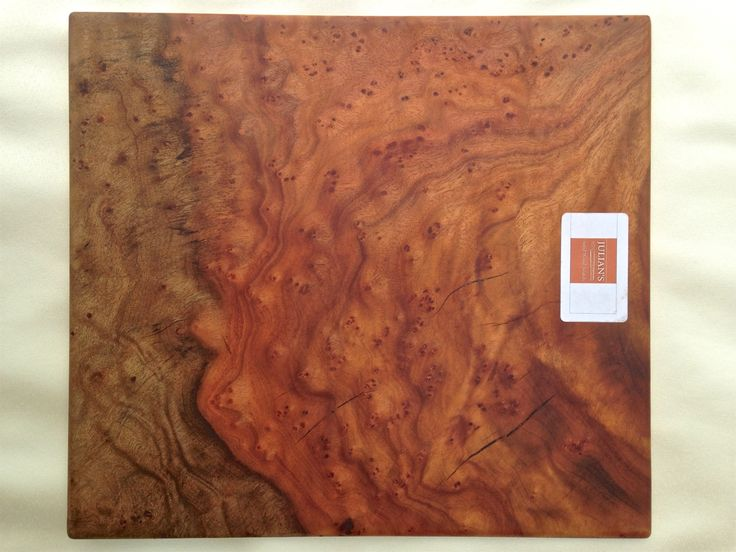 Camphor burl wood
