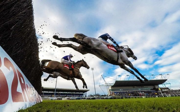 Looking for a corner to your Saturday horse racing bets? Get horse #racing_tips as well as in-depth previews, features, and latest news at Racedayrating. We have all the tips you'll need for Win the horse racing.