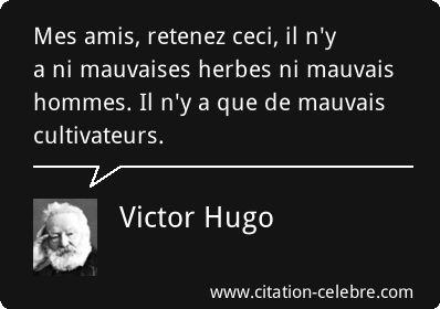 Mes amis, retenez ceci, il n'y a ni mauvaises herbes ni mauvais hommes. Il n'y a que de mauvais cultivateurs. Victor Hugo