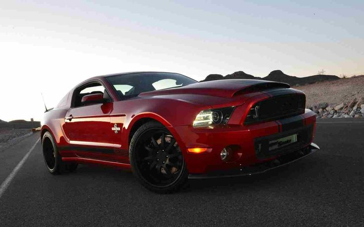 wallpaper resolutions. 21/05/2015 – 1920×1200 shelby gt500 desktop wallpapers. for. shelby gt 500 wallpapers – full hd wallpaper search. 2014 shelby gt500 super snake picture. shelby american gt500 super snake 2013. ford shelby gt500 super snake wallpaper 2560×1600.