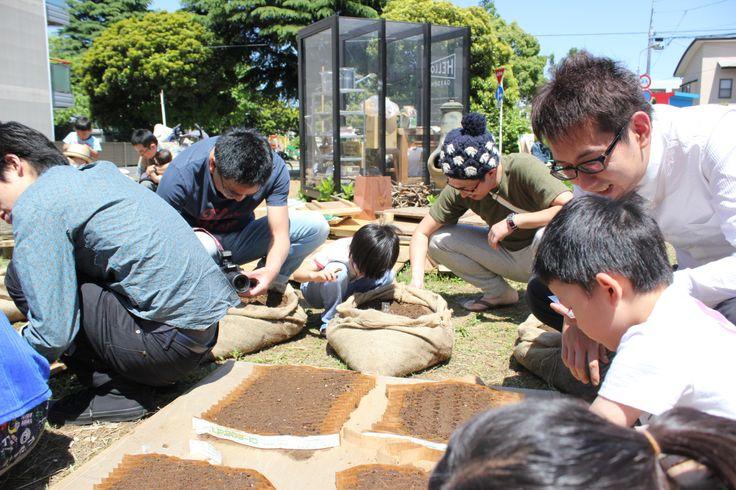 2014/05/175月の種まきMay seed sowing