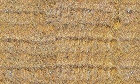 Textures Texture seamless | Hay texture seamless 20746 | Textures - NATURE ELEMENTS - VEGETATION - Dry grass | Sketchuptexture