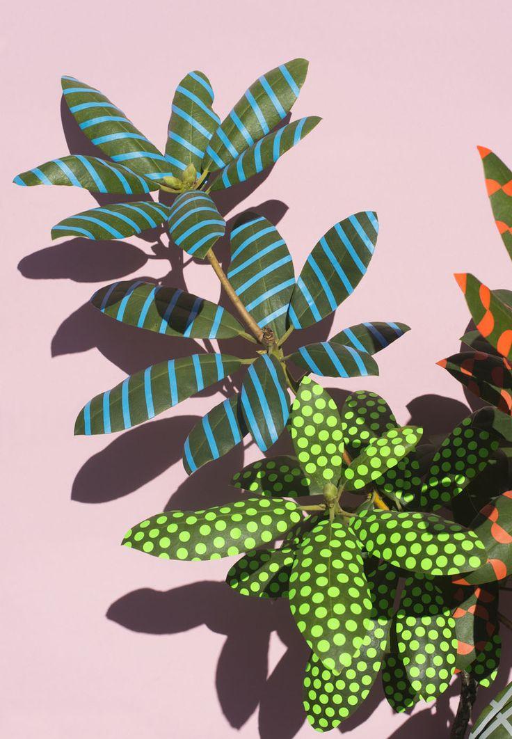 Herbier revisité |MilK decoration