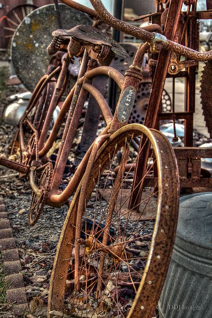 love this old rusty bike ...