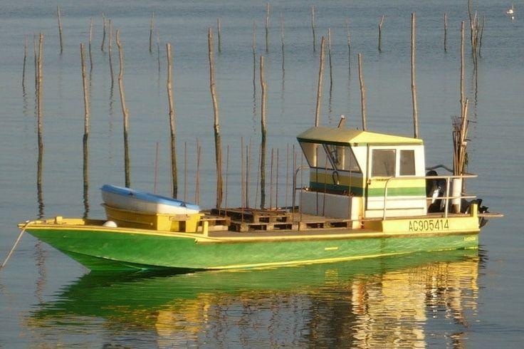 Pinasse : embarcation typique du bassin d'Arcachon et du littoral gascon : longue, étroite, à l'avant très relevé, elle est traditionnellement en bois de pin des Landes et à fond plat. Avec l'évolution des techniques et des usages, ses flancs se sont élargis pour accueillir un moteur, et les matériaux composites remplacent parfois le pin. Marchant à la voile ou au moteur, la pinasse retrouve aujourd'hui une grande popularité ; elle n'est plus utilisée pour la pêche ou pour l'o