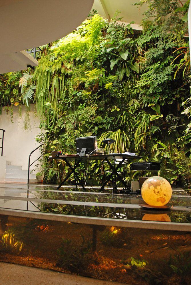 Very lush greenwall at Patrick Blanc's house