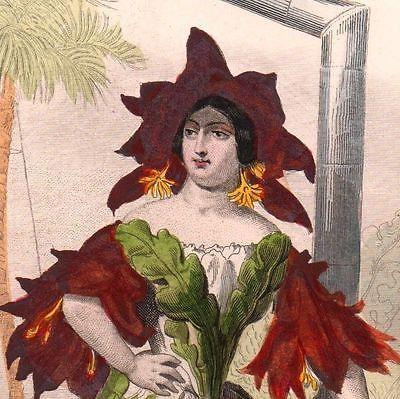 Gravure-XIXe-Couleur-Fleur-Flower-Cactus-Jean-Jacques-Grandville-Cactaceae-1847
