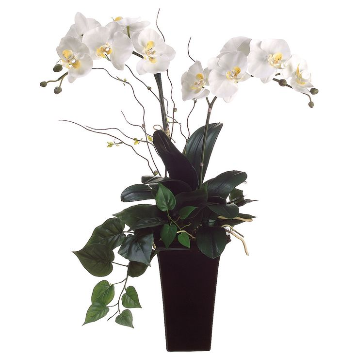 these white silk orchids are accented by greenery and twigs and arranged in a dark ceramic - Silk Orchids