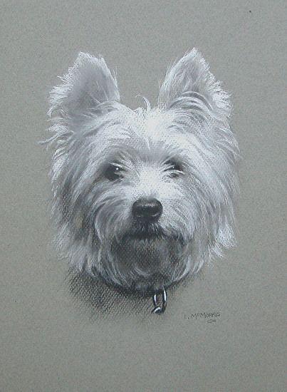 116 besten brandmalerei bilder auf pinterest  hund