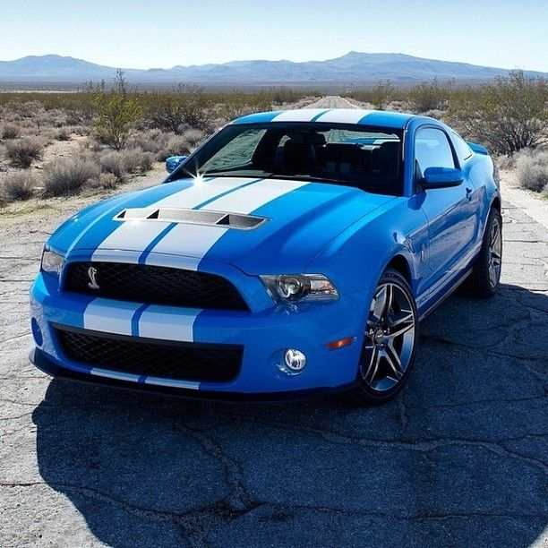 Pure Power! Shelby GT500
