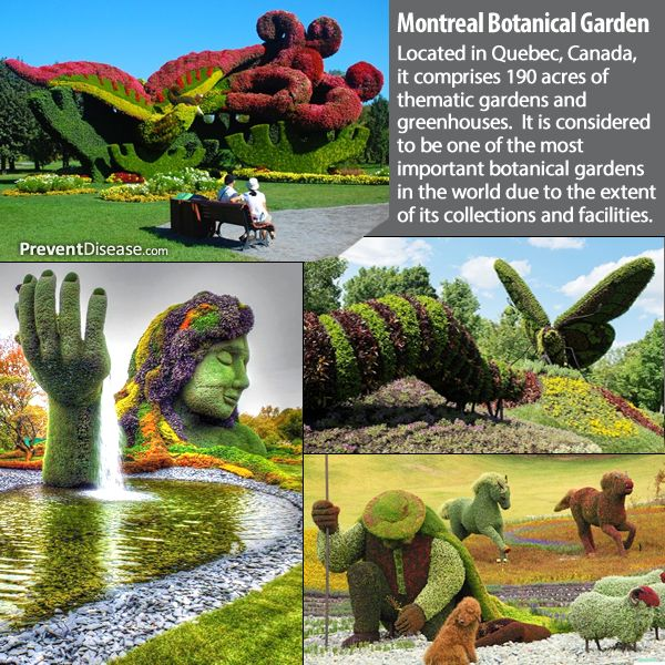 Montreal Botanical Garden Places I Would Like To Be Or