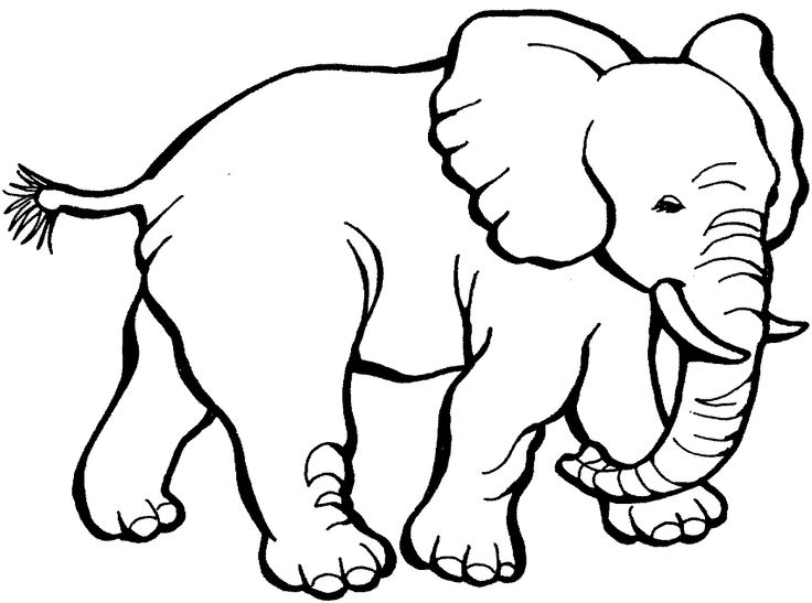 Elephants With Big Feet Strong Coloring Pages For Kids Printable