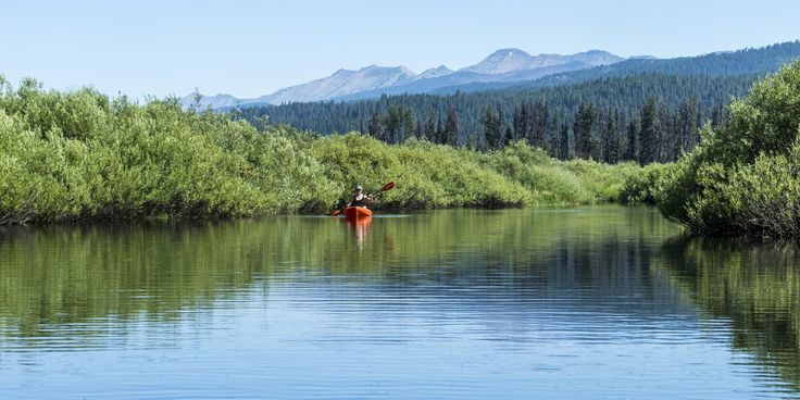 The Forest Service provides a put-in spot on a designated canoe/kayak river trail on the Clearwater River above the inlet to Seeley Lake. This route is flat and unobstructed with fabulously clear water all the way to Seeley Lake. Turtles are plentiful, as are a variety of birds. #Montana #CanoeTrail