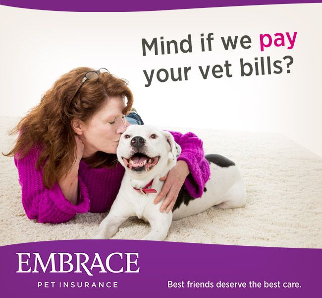 Don't let expensive vet bills come between you and the best care for your pet. Get a quote from Embrace Pet Insurance today.
