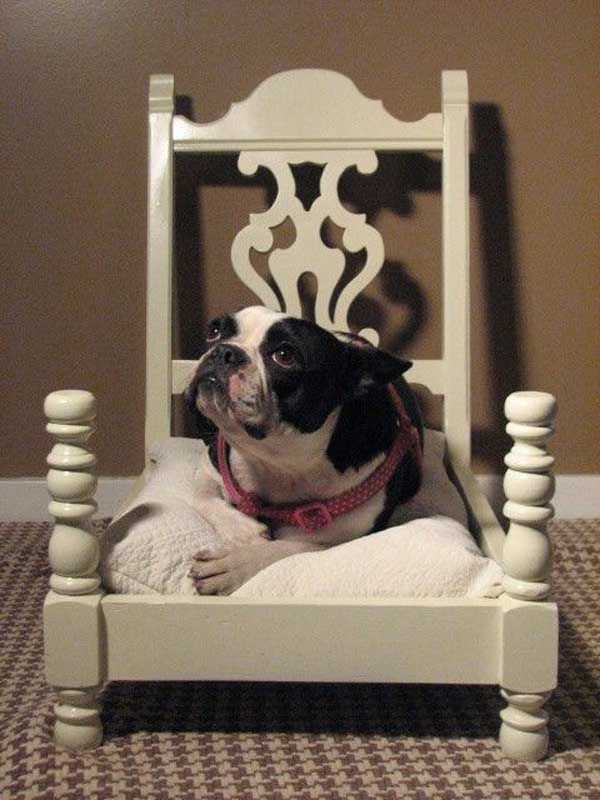 instead of a dog bed how about one for Dolls ; 25 Absurd Ways To Put Old Stuff To Creative Use As New Treasures | The Organizing Lady