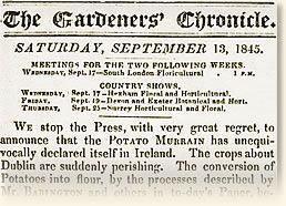 The The Irish Potato Famine, 1847