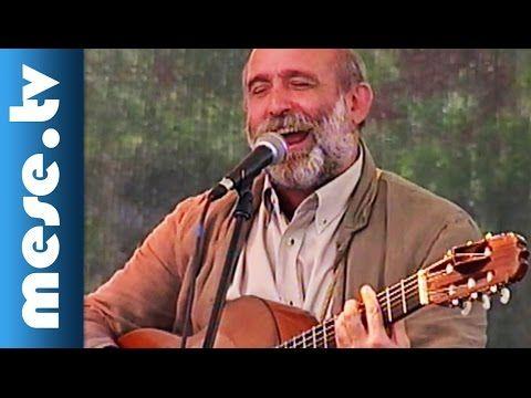 Gryllus Vilmos: Gólya (dal, koncert részlet)
