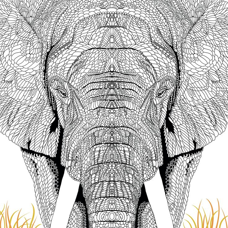 1182 best coloring pages images on Pinterest Doodles, Tattoo ideas - best of complex elephant coloring pages