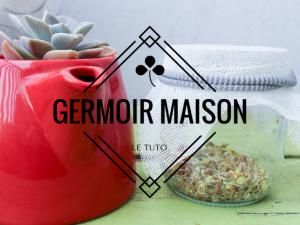 Comment faire un germoir maison ? (Tuto) • Hellocoton.fr