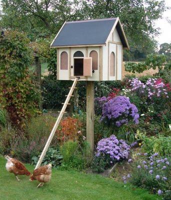 Chicken cottage up a pole, a la Hugh.