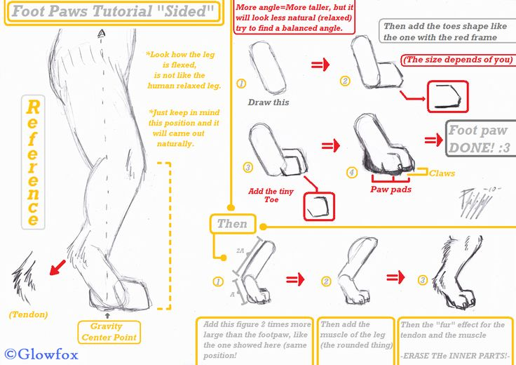 "*Foot Paws ""Side View""-Tutorial-* by The_Furry_Art_Academy -- Fur Affinity [dot] net"