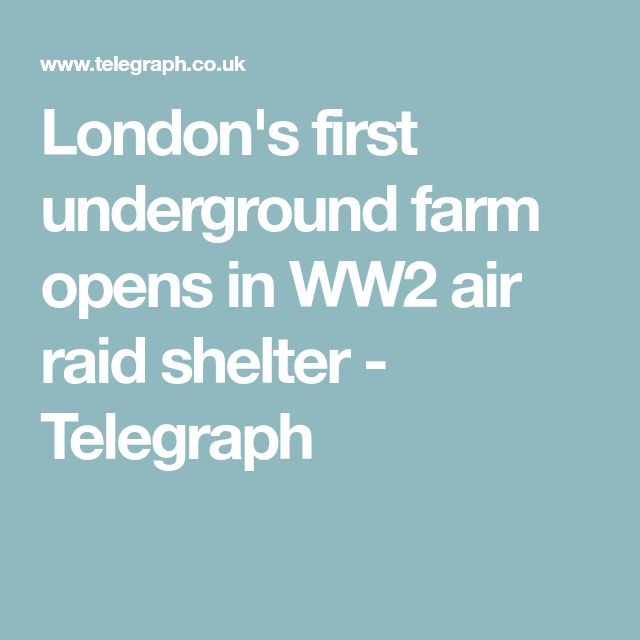 7 best agricultura de precisin images on pinterest londons first underground farm opens in ww2 air raid shelter fandeluxe Images