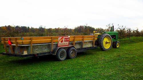 "Fall is on its way, and in this part of the country, that means pumpkins are going to be showing up everywhere! The Circleville Pumpkin Show, which brings more than 300,000 people to the town about a half-hour south of Columbus, is a must-do. From Oct. 16-19, see the locally grown competitors for ""King Pumpkin"" [...]"