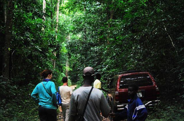 Luís Graça & Camaradas da Guiné: Guiné 63/74 - P7727: Notas fotocaligráficas de uma viagem de férias à Guiné-Bissau (João Graça, jovem médic...