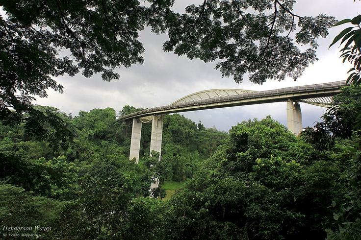 handerson waves adalah jembatan dengan ketinggan 36m diatas henderson road singapore