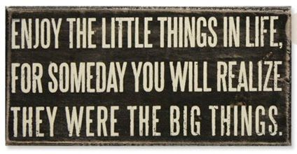 quote: Words Of Wisdom, Life Quotes, Little Things, Remember This, Big Things, True Words, Truths, So True, True Stories